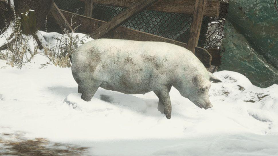Как охотиться на животных в Resident Evil Village